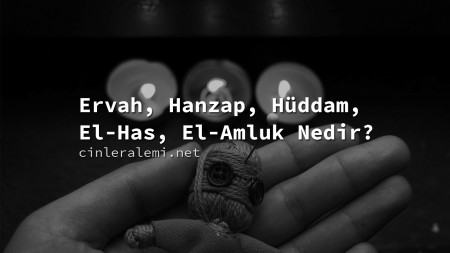 Ervah, Hanzap, Hüddam, El-Has, El-Amluk Nedir?
