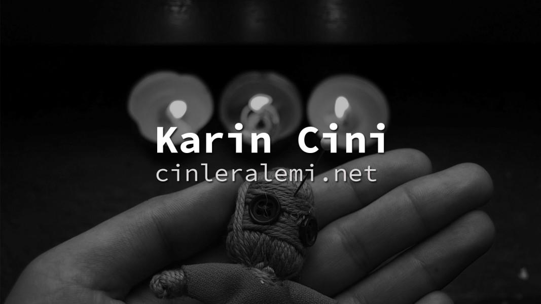 Karin Cini